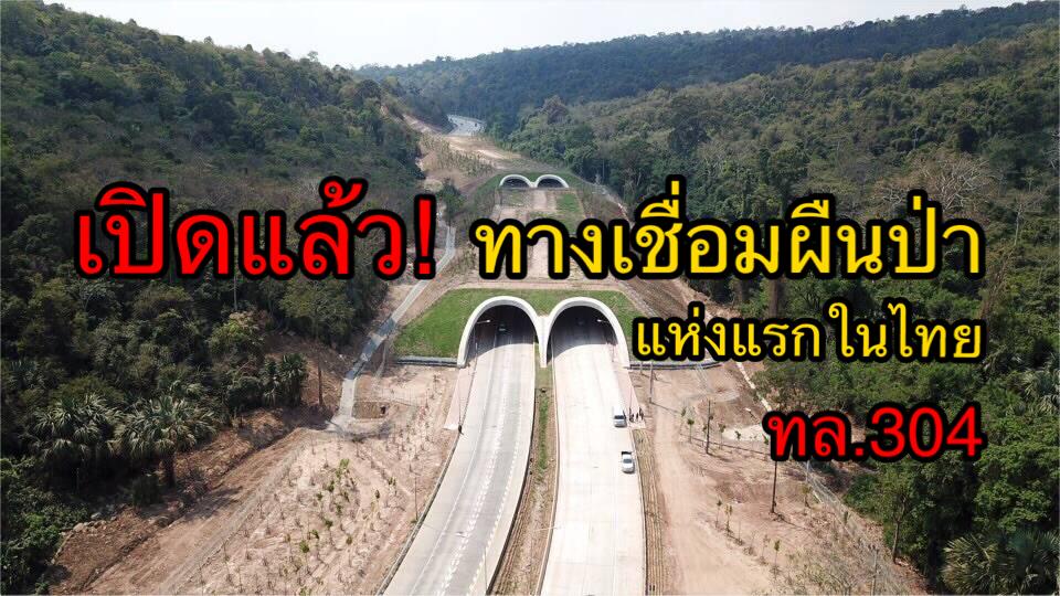 เปิดแล้ว! ถนน ทล. 304 'กบินทร์บุรี-ปักธงชัย' เชื่อมผืนป่ามรดกโลกแห่งแรกในไทย